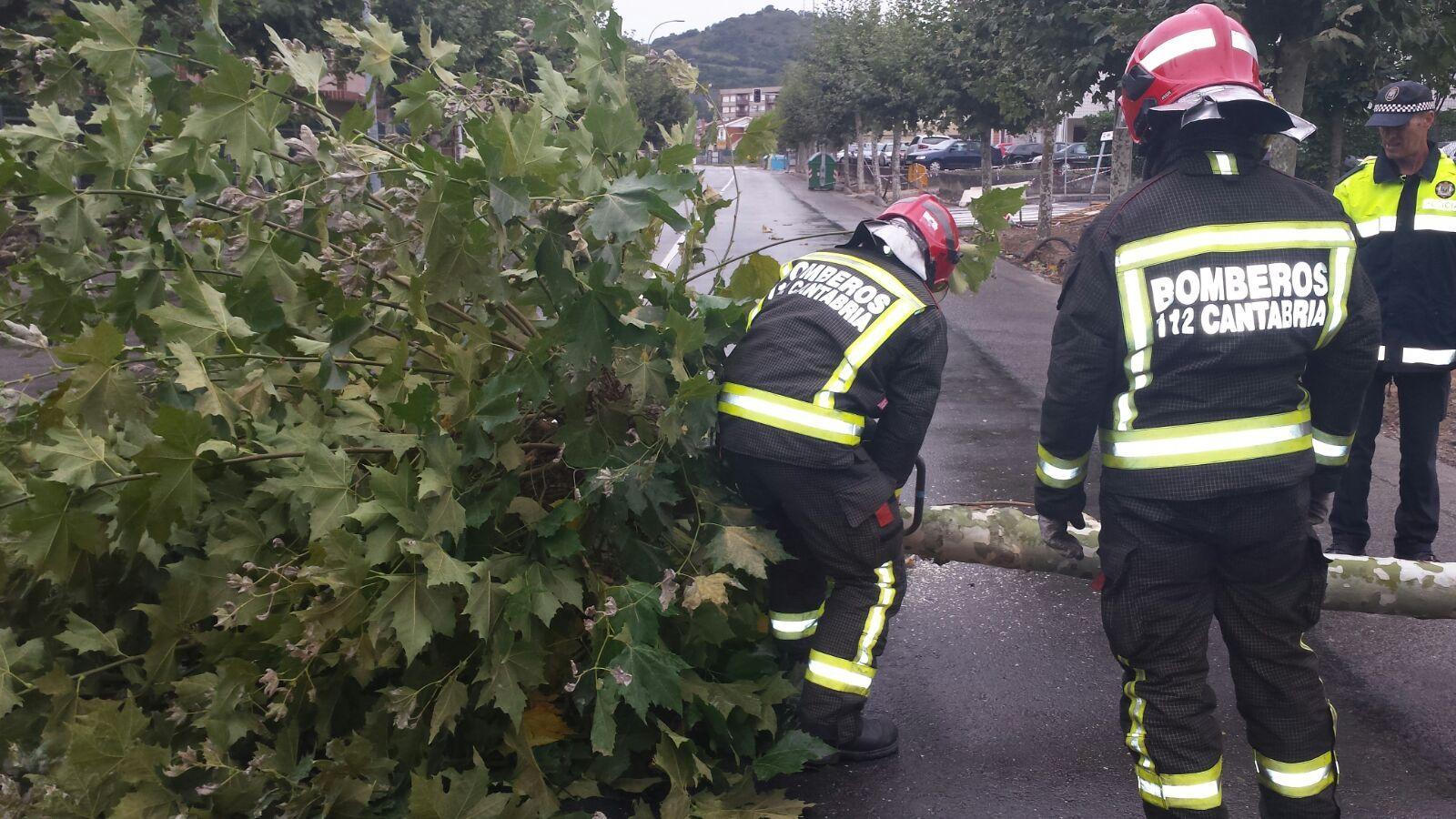 112 cantabria emergencias arbol caido